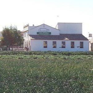 Tomarse una horchata en Alboraya